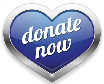 donate-now3-400